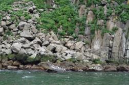 KayakFreerideKamchatka35