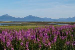 AlaskaAtAGlance201505