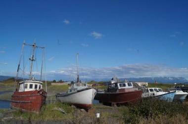 Boat cemetary