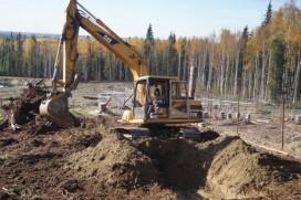 Woman at digging work
