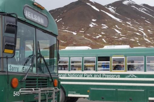 I like those busses!