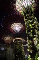 Singapore027