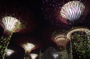 Singapore028