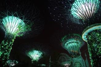 Singapore030