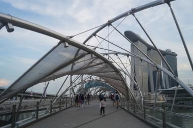 DNA Bridge