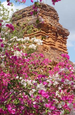 Poshanu Towers