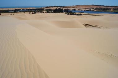 The White Sand Dunes