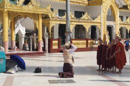 YangonMMR20