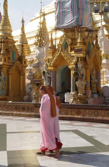 YangonMMR24