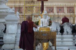 YangonMMR51