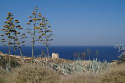 16_Gozo