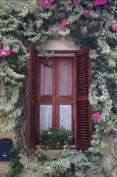 38_Windowesque